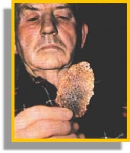 Joe Simonton y su torta extraterrestre